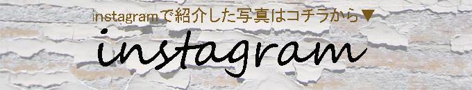 インスタ掲載写真紹介ページ